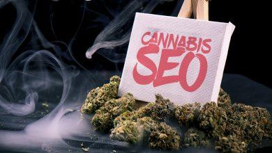 Cannabis SEO Strategies